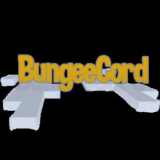 Obrazek silnika Bungeecord
